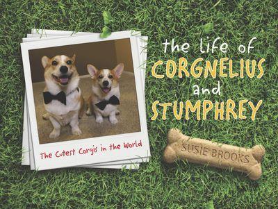 The Life Of Corgnelius And Stumphrey