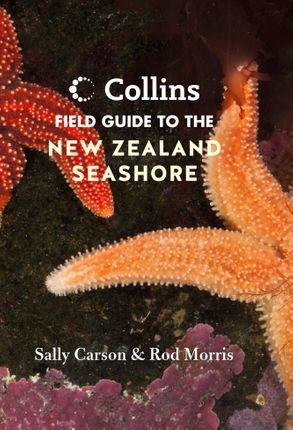 Cover image - Collins Field Guide to the New Zealand Seashore
