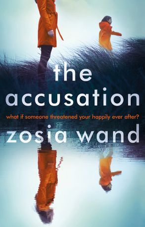 Cover image - The Accusation