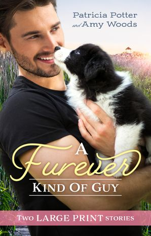 A Furever Kind Of Guy/The Soldier's Promise/An Officer and Her