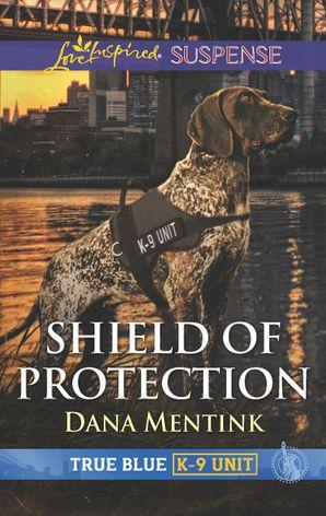 Shield of Protection (novella)