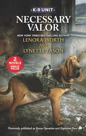 Necessary Valor/Rescue Operation/Explosive Force