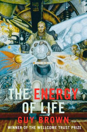 The Energy of Life Paperback  by Guy Brown