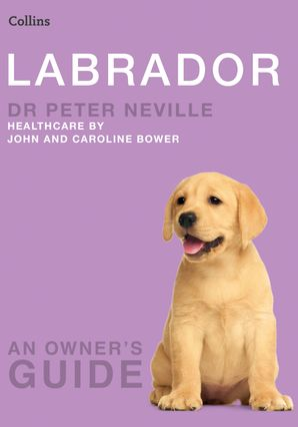Labrador Paperback  by Dr. Peter Neville