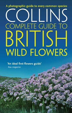 British Wild Flowers Paperback  by Paul Sterry