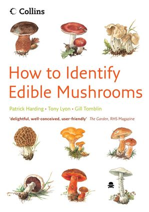 edible-mushrooms