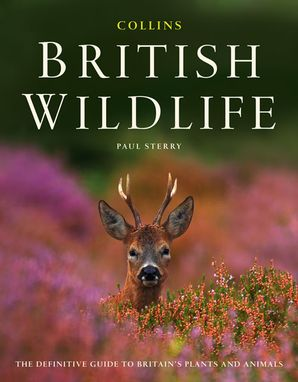 Collins British Wildlife Hardcover  by Paul Sterry