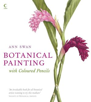botanical-painting-with-coloured-pencils