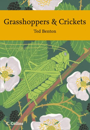 Grasshoppers and Crickets