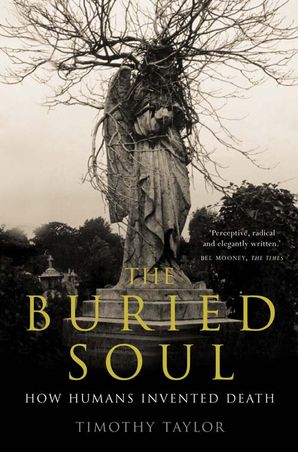 The Buried Soul Paperback  by Timothy Taylor