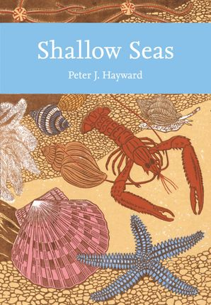 Shallow Seas Paperback  by