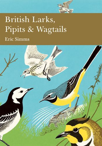 British Larks, Pipits and Wagtails (Collins New Naturalist Library, Book 78)