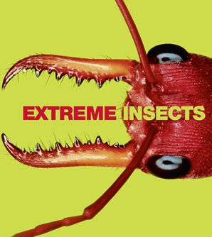 Extreme Insects Hardcover  by Richard Jones