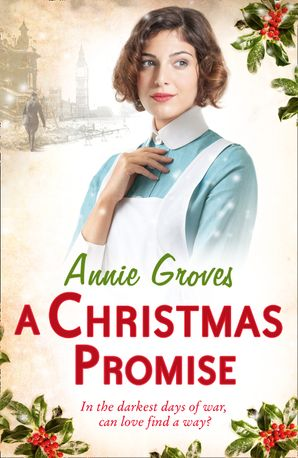 A Christmas Promise Paperback  by Annie Groves