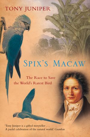 Spix's Macaw: The Race to Save the World's Rarest Bird (Text Only) eBook  by Tony Juniper