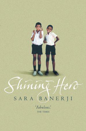 Shining Hero eBook  by