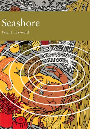Seashore (Collins New Naturalist Library, Book 94) eBook  by