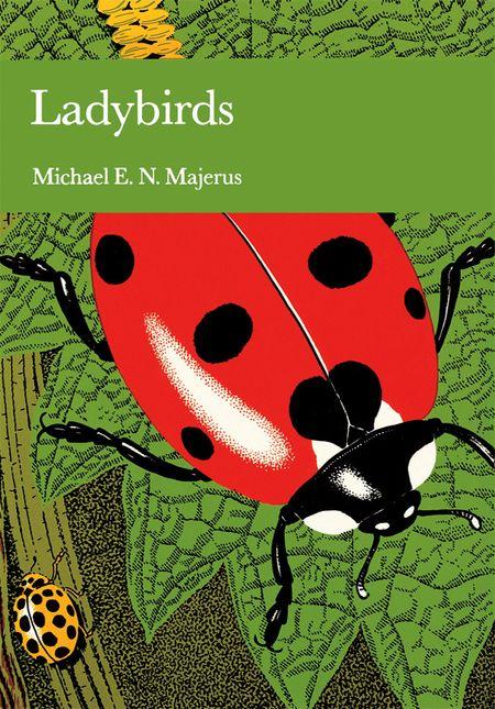 Ladybird gay