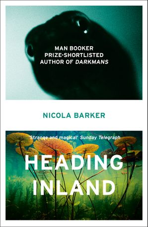 Heading Inland Paperback  by Nicola Barker