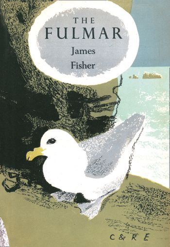 The Fulmar