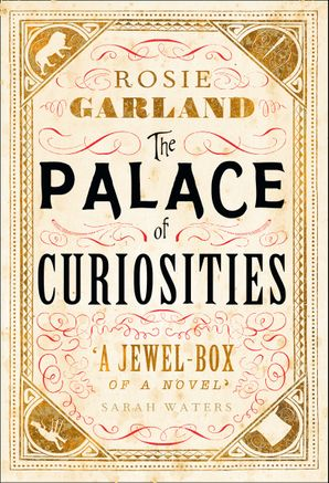 The Palace of Curiosities Hardcover  by