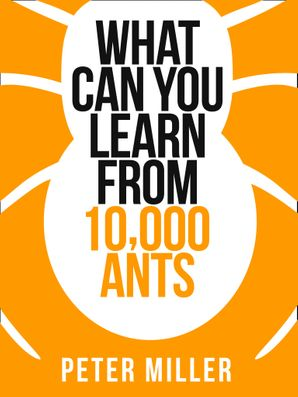 What You Can Learn From 10,000 Ants eBook  by Peter Miller