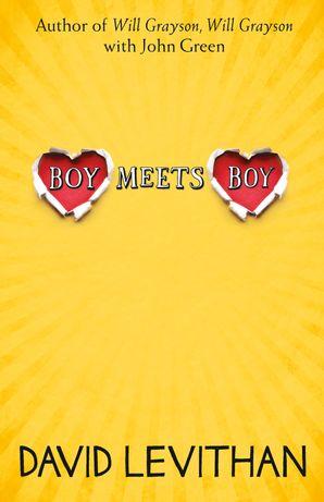 Boy Meets Boy Paperback  by