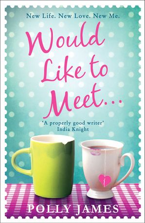 Would Like to Meet Paperback  by Polly James