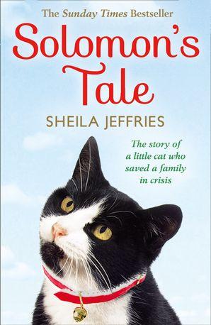 Solomon's Tale Paperback  by Sheila Jeffries