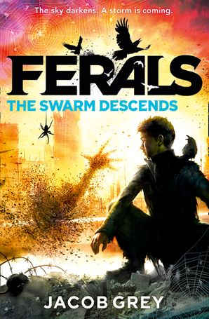The Swarm Descends Paperback  by Jacob Grey