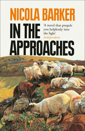 In the Approaches Paperback  by Nicola Barker