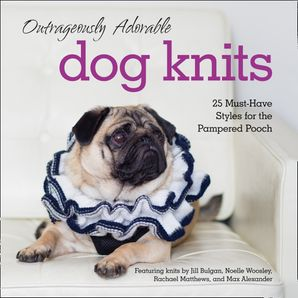 outrageously-adorable-dog-knits