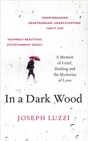 In a Dark Wood eBook  by Joseph Luzzi