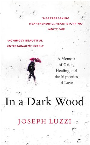 In a Dark Wood: A Memoir of Grief, Healing and the Mysteries of Love Paperback  by Joseph Luzzi