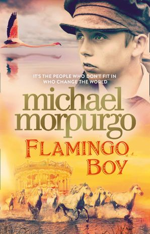 Flamingo Boy Hardcover  by