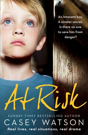 At Risk eBook  by Casey Watson
