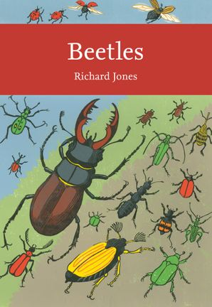 Beetles Paperback  by Richard Jones