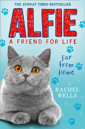 Alfie Far From Home Paperback  by Rachel Wells