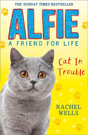 Alfie Cat in Trouble Paperback  by Rachel Wells