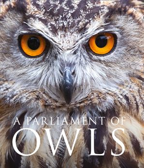 A Parliament of Owls Hardcover  by Mike Unwin