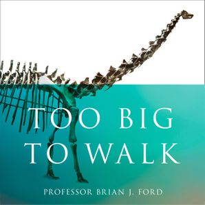 too-big-to-walk