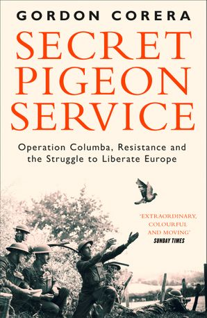 secret-pigeon-service