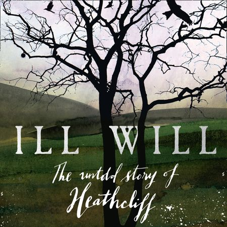 Ill Will - Michael Stewart, Read by Everal Walsh