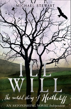 Ill Will Paperback  by Michael Stewart