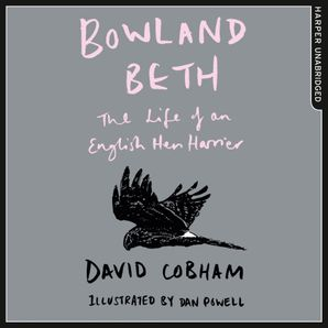 Bowland Beth Download Audio Unabridged edition by David Cobham