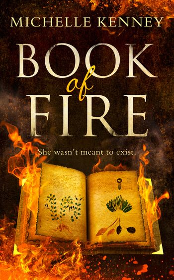Book of Fire (The Book of Fire series, Book 1) - Michelle Kenney