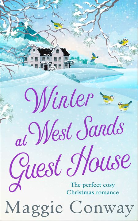 Winter at West Sands Guest House - Maggie Conway
