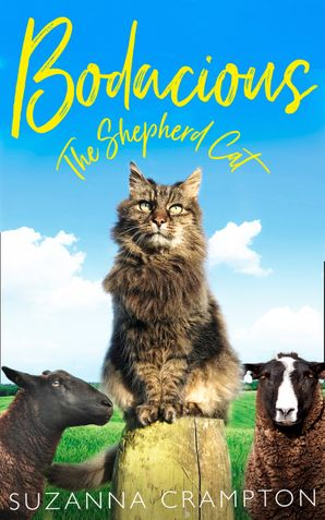 Bodacious: The Shepherd Cat Hardcover  by Suzanna Crampton
