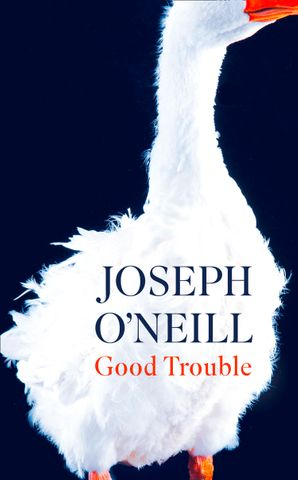 Good Trouble Hardcover  by