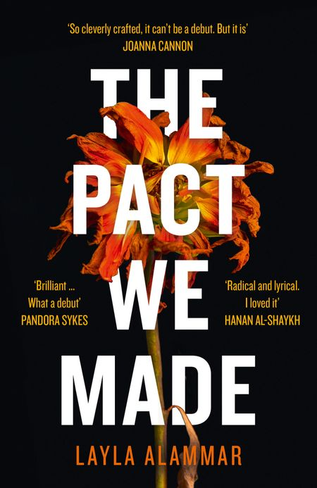 The Pact We Made - Layla AlAmmar